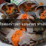 วิธีทำ ปูไข่ดองน้ำปลา แบบง่ายๆ ทำเองได้ที่บ้าน